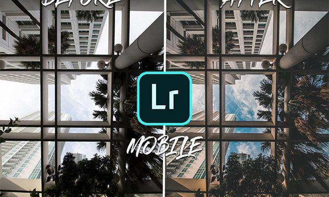 presets lightroom mobile gratuit francais