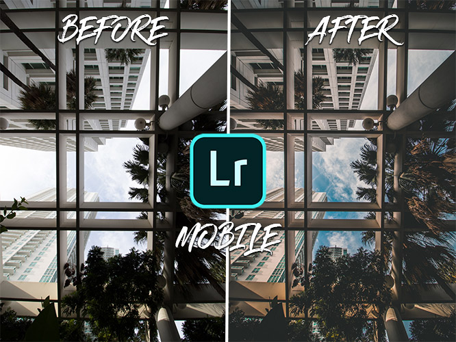 presets lightroom mobile gratuit francais
