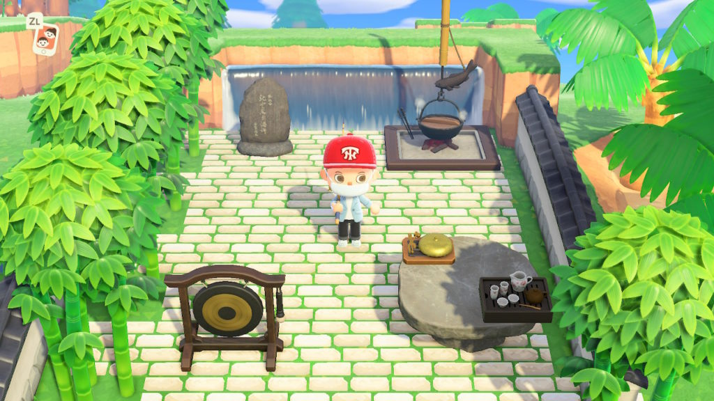 animal crossing switch test fr